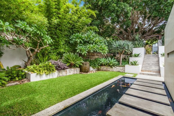 this space is an amazing blend of flora, fauna and modern landscaping design