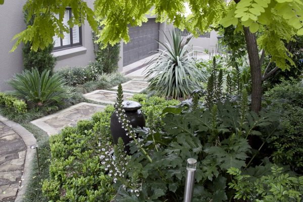 expert landscaping gives the impression of a natural rainforest