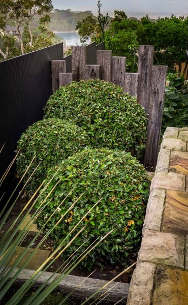 reclaimed timber and garden hedges create seamless landscaping